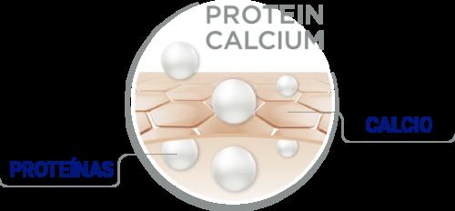 propiedades reparadoras y nutritivas con proteína y calcio